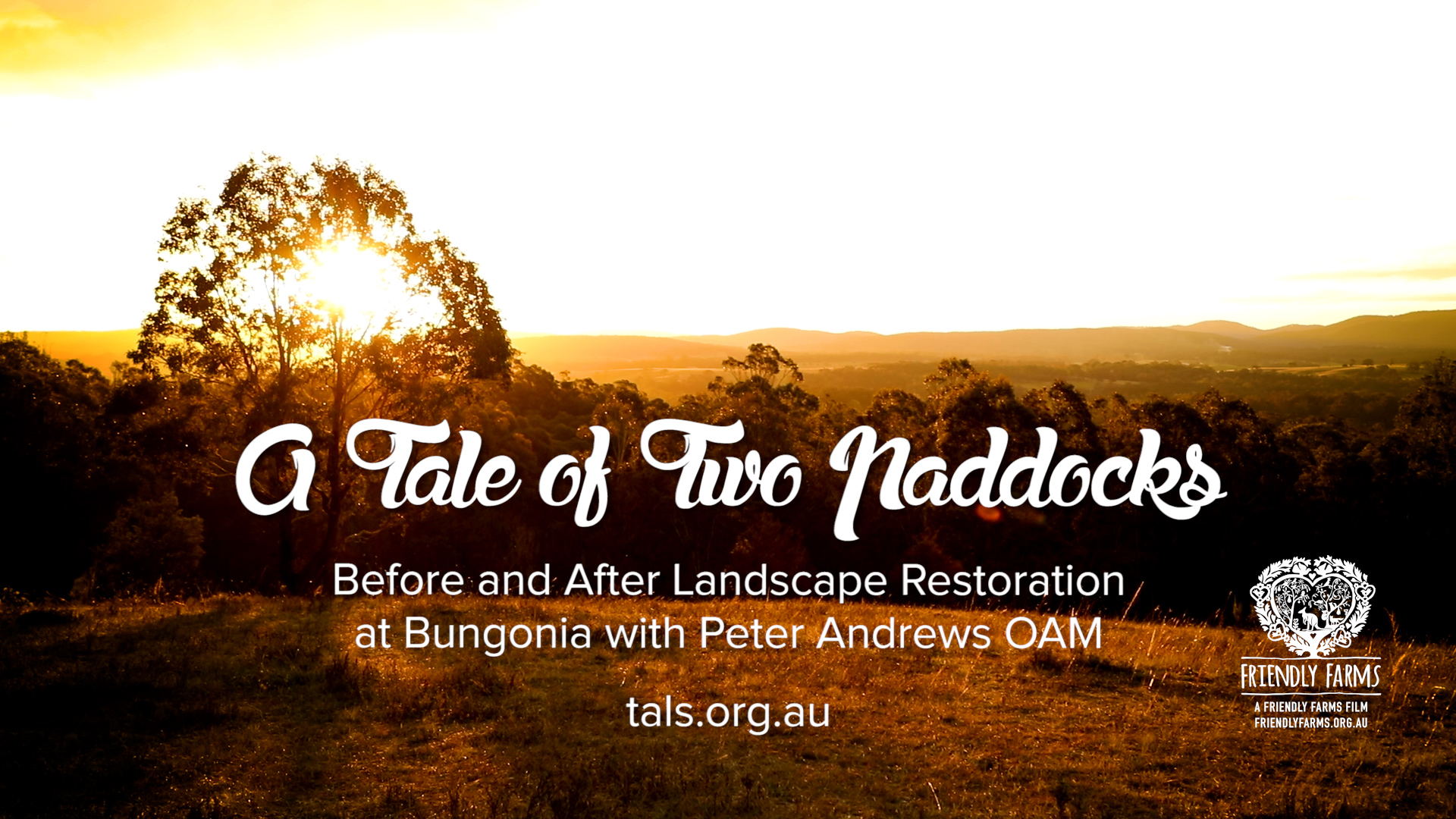 A Tale of Two Paddocks